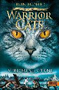 Cover-Bild zu Hunter, Erin: Warrior Cats - Das gebrochene Gesetz. Verlorene Sterne