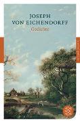 Cover-Bild zu Eichendorff, Joseph von: Gedichte