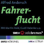 Cover-Bild zu Fahrerflucht (Audio Download) von Andersch, Alfred