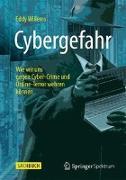 Cover-Bild zu Cybergefahr von Willems, Eddy