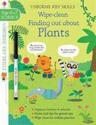 Cover-Bild zu Wipe-Clean Finding Out About Plants 6-7 von Watson, Hannah