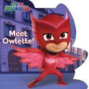 Cover-Bild zu Meet Owlette! von Cregg, R. J. (Hrsg.)