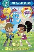 Cover-Bild zu The Big Birthday Surprise! (Nella the Princess Knight) von Finnegan, Delphine