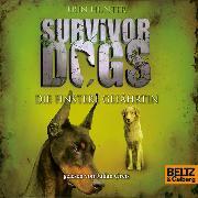 Cover-Bild zu Survivor Dogs - Die finstere Gefährtin (Audio Download) von Hunter, Erin