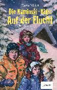 Cover-Bild zu Die Kaminski-Kids: Auf der Flucht (eBook) von Meier, Carlo