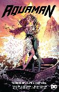 Cover-Bild zu DeConnick, Kelly Sue: Aquaman Vol. 4: Echoes of a Life Lived Well
