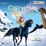 Cover-Bild zu Ostwind. Spukalarm im Pferdestall & Weihnachten mit Hindernissen (Audio Download) von THiLO