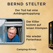 Cover-Bild zu Nie wieder Ferienhaus / Der Tod hat eine Anhängerkupplung / Der Killer kommt auf leisen Klompen von Stelter, Bernd