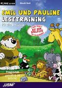 Cover-Bild zu Emil und Pauline auf dem Spielplatz - Lesetraining für die 1. Klasse (CD-ROM) von Bartl, Almuth