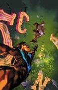 Cover-Bild zu Humphries, Sam: Nightwing Vol. 6: The Untouchable