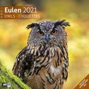 Cover-Bild zu Eulen Kalender 2021 - 30x30 von Ackermann Kunstverlag (Hrsg.)