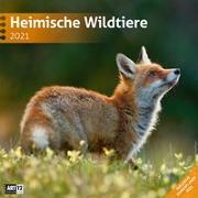 Cover-Bild zu Heimische Wildtiere Kalender 2021 - 30x30 von Ackermann Kunstverlag (Hrsg.)