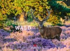Cover-Bild zu Tierwelt Wald Kalender 2021 von Ackermann Kunstverlag (Hrsg.)
