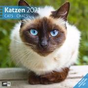 Cover-Bild zu Katzen Kalender 2021 - 30x30 von Ackermann Kunstverlag (Hrsg.)