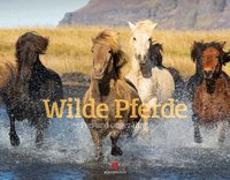 Cover-Bild zu Wilde Pferde Kalender 2021 von Ackermann Kunstverlag (Hrsg.)