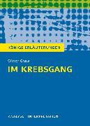 Cover-Bild zu Im Krebsgang (eBook) von Bernhardt, Rüdiger
