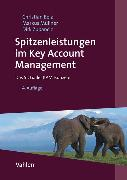 Cover-Bild zu Belz, Christian: Spitzenleistungen im Key Account Management