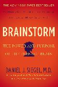 Cover-Bild zu Siegel, Daniel J.: Brainstorm (eBook)