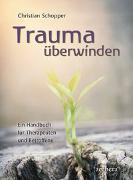 Cover-Bild zu Trauma überwinden von Schopper, Christian