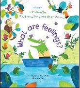 Cover-Bild zu Daynes, Katie: What Are Feelings?