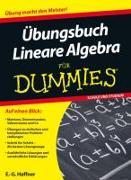 Cover-Bild zu Übungsbuch Lineare Algebra für Dummies