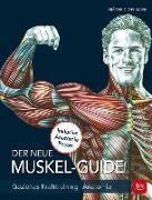 Cover-Bild zu Der neue Muskel Guide von Delavier, Frédéric