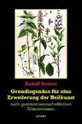 Cover-Bild zu Steiner, Rudolf: Grundlegendes zur Erweiterung der Heilkunst (eBook)