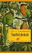 Cover-Bild zu Kronauer, Brigitte: Teufelsbrück