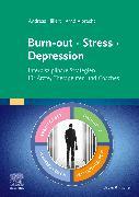 Cover-Bild zu Hillert, Andreas: Burn-out - Stress - Depression