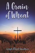 Cover-Bild zu Jacobson, Joseph: A Grain of Wheat