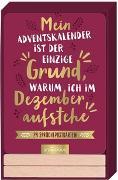 Cover-Bild zu Mein Adventskalender ist der einzige Grund, warum ich im Dezember aufstehe