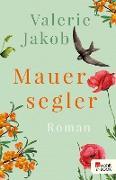 Cover-Bild zu Mauersegler (eBook) von Jakob, Valerie