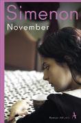 Cover-Bild zu Simenon, Georges: November