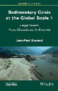 Cover-Bild zu Bravard, Jean-Paul: Sedimentary Crisis at the Global Scale 1 (eBook)