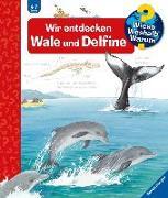 Cover-Bild zu Wir entdecken Wale und Delfine von Rübel, Doris
