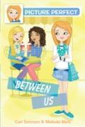 Cover-Bild zu Simmons, Cari: Picture Perfect #4: Between Us (eBook)