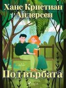 Cover-Bild zu Y NSN N (eBook)
