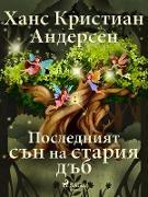 Cover-Bild zu Y N N N N NS N N N N NS (eBook)