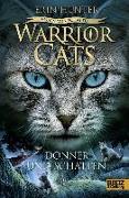 Cover-Bild zu Warrior Cats - Vision von Schatten. Donner und Schatten von Hunter, Erin