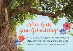 Cover-Bild zu Brunnen Faltkarte Alles Gute z. Geburtstag