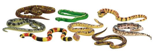 Cover-Bild zu Schlangen und Co. Biegestifte