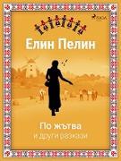 Cover-Bild zu Y NSN N N N (eBook)