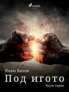 Cover-Bild zu Y N : N N NSN (eBook)