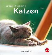 Cover-Bild zu Tierisch entspannte Katzen Postkartenkalender Kalender 2021