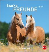 Cover-Bild zu Pferde Postkartenkalender - Starke Freunde Kalender 2021 von Stuewer, Sabine
