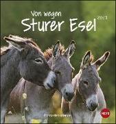 Cover-Bild zu Esel Postkartenkalender - Von wegen sturer Esel Kalender 2021