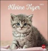 Cover-Bild zu Katzen Postkartenkalender Kleine Tiger Kalender 2021