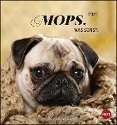 Cover-Bild zu Mops Postkartenkalender Kalender 2021