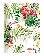 Cover-Bild zu Ladytimer Jungle 2022 - Dschungel - Taschenkalender A6 (11x15 cm) - Weekly - 192 Seiten - Notiz-Buch - Termin-Planer - Alpha Edition