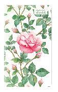 Cover-Bild zu Ladytimer Slim Roses 2022 - Taschen-Kalender 9x15,6 cm - Rosen - Weekly - 128 Seiten - Notiz-Buch - Alpha Edition